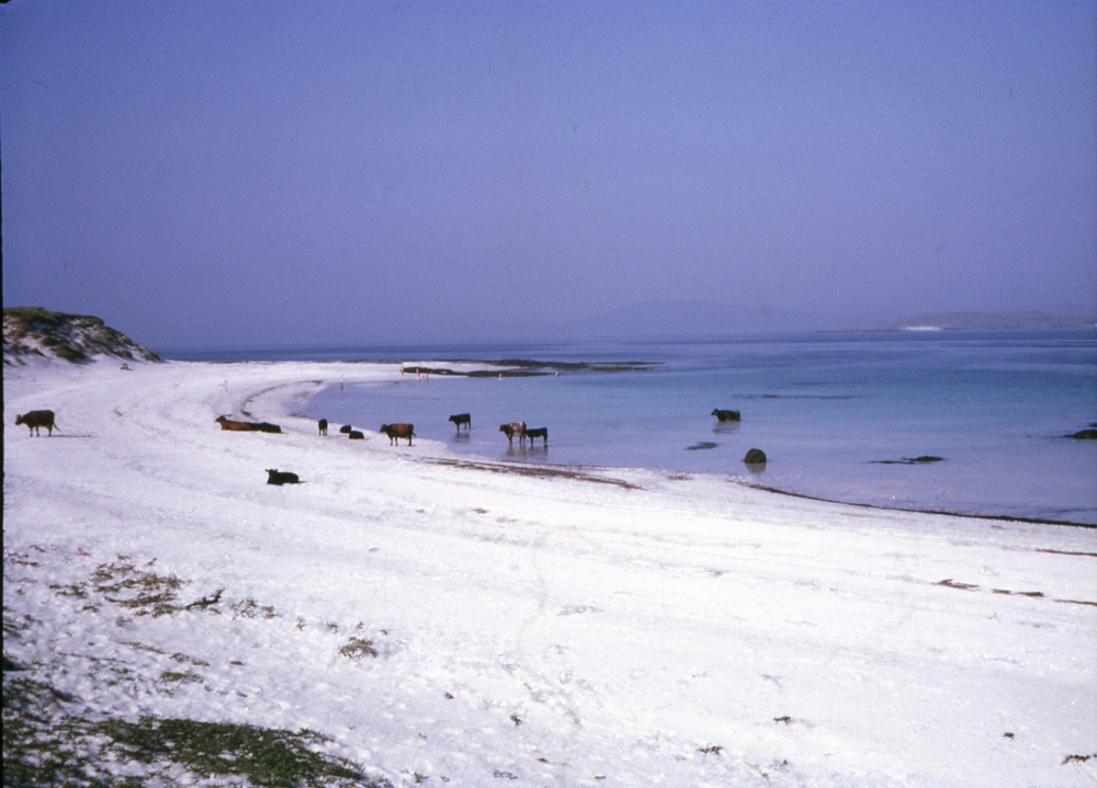 img 316 Barra Beach Sept 1970